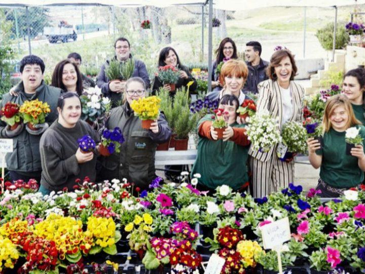Pelayo y Santalucía celebran con la asociación talismán una jornada de voluntariado corporativo