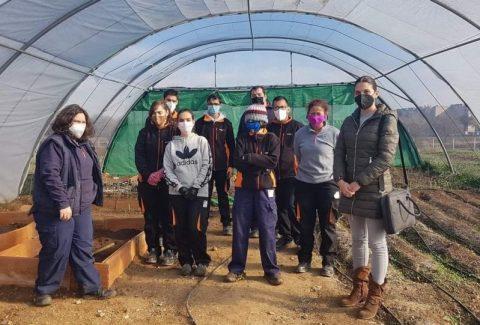 Formación en jardinería a jóvenes con discapacidad